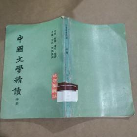 中国文学精读-中册