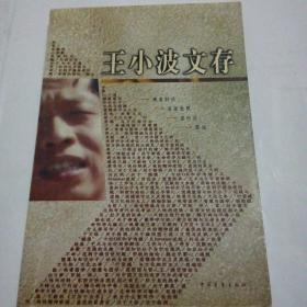 王小波文存