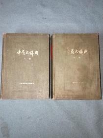 中药大辞典【上下全两册;精装缩印本】