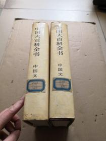 中国大百科全书 中国文学 全二册精装特种本