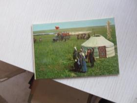 乌兰牧骑明信片15枚
