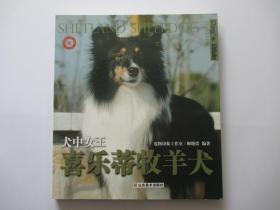 犬中女王:喜乐蒂牧羊犬