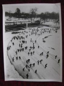 老照片   匈牙利的布达佩斯市立公园的滑冰场   麻面厚纸      照片20厘米宽15厘米    B箱——19号袋