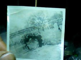 2寸黑白照片 合照