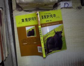 高原野牦牛 。、