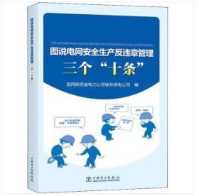 新书-图说电网安全生产反违章管理三个