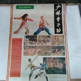 2开剧情电影海报   少林童子功   武当仙袍  他选择谋杀   江湖妹子  在暗杀明单上  5张共售