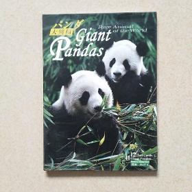大熊猫(明信片12枚)