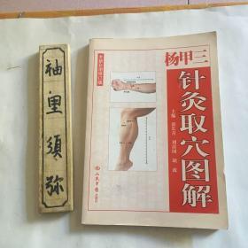 杨甲三针灸取穴图解(全新彩图修订版)