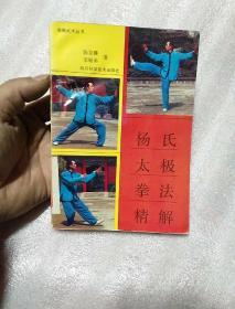 杨氏太极拳法精解