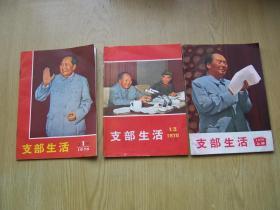 支部生活 上海 1970 1.13.(封面带毛.林像)3本合售【a--4】