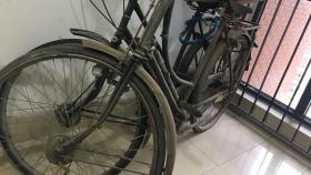 民国进口自行车