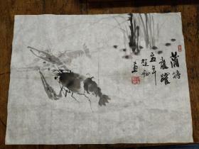 赵钲绘画――对虾水草