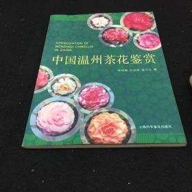 中国温州茶花鉴赏