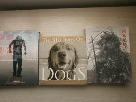 (THE BIG BOOK OF)DOGS