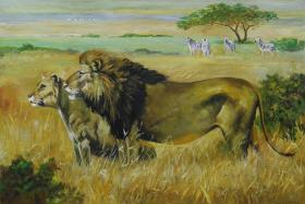 狮王争霸    动物  (布面油画)