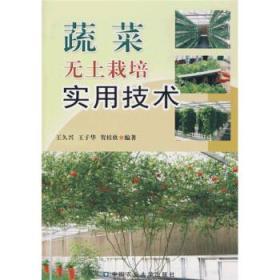 蔬菜无土栽培实用技术 正版 王久兴  9787810662161