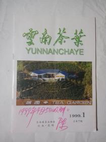 云南茶叶1999年第1期
