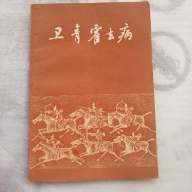 卫青霍去病  2014.4.1