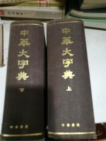 中华大字典(缩印本全二册)