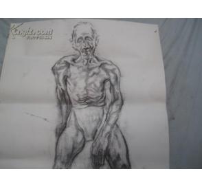 人体素描 大幅双面画一张 110 79厘米图片