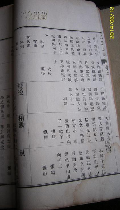 老家谱--------民国13年铅字版-----山东高密王氏图片