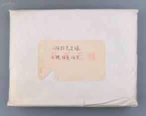 著名导演、北影副院长 谢小晶 1981年影视剧本分镜头手稿《阿勒克足球》《琥珀色篝火》两份五百余页  HXTX104888