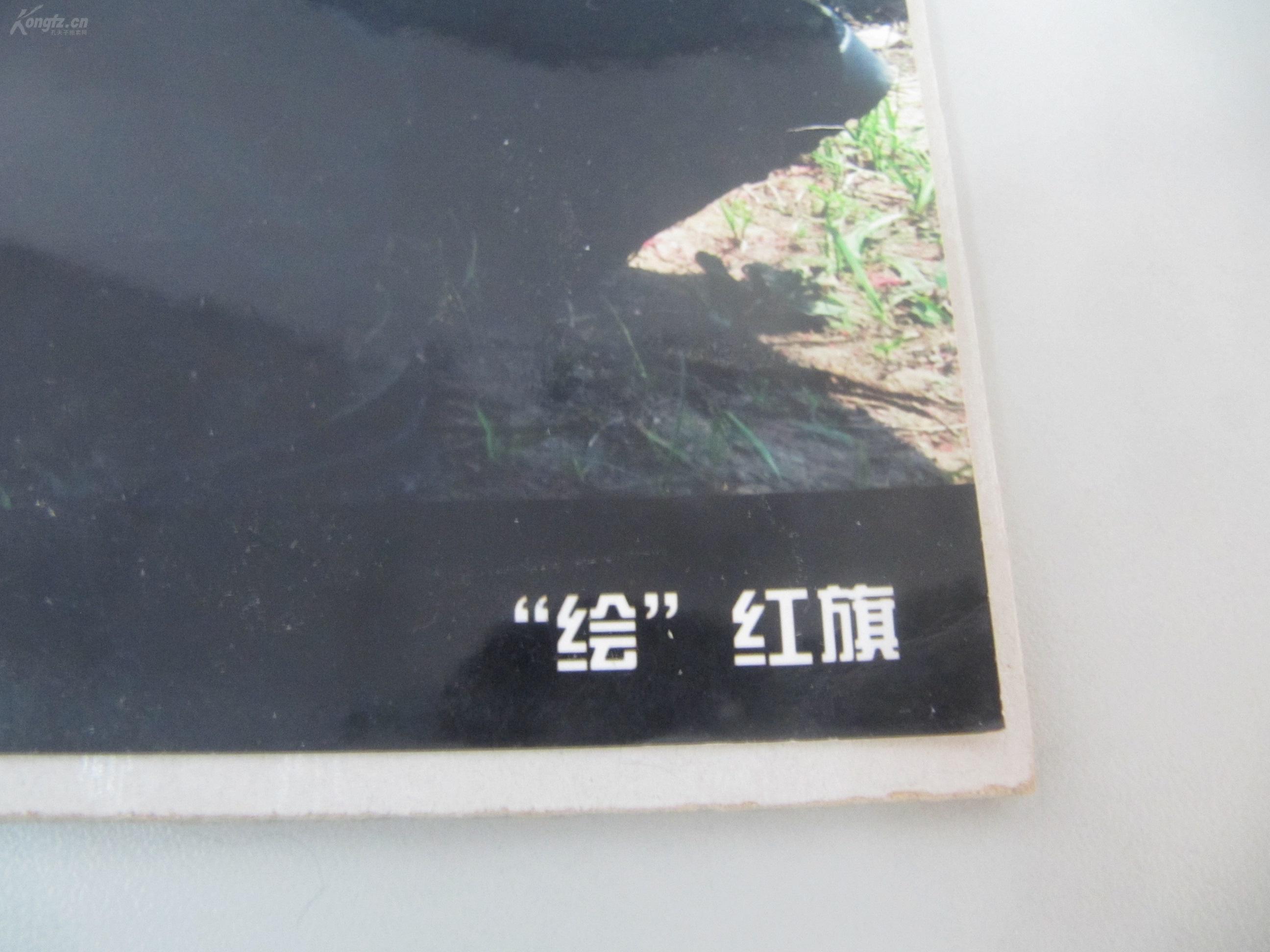 李福清 军旅摄影照片一张 绘 红旗 尺寸25 20厘米