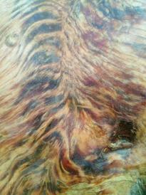 纯天然大块琥珀木,异形大摆件。气味清香扑鼻,纯天然国家珍贵树种红松,经过1000多年大自然沧桑巨变形成】松香气味香浓扑鼻,美观大方,是宾馆,家庭居室摆件精品