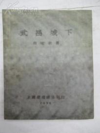 武昌城下 (重印本)