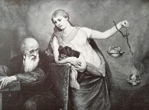 1890年小幅木刻版画《活体解剖者》(vivisector)---gabriel max----27.5*17厘米--木刻艺术欣赏(8)