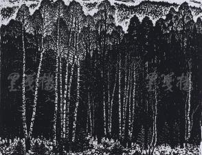 著名版画家、北大荒版画开创者和奠基者 杜鸿年 1981年 黑白木刻版画作品《桦林》一幅 原装裱(九十年代在山东省文化馆展出,尺寸:42*51cm,钤印:杜鸿年) HXTX105301