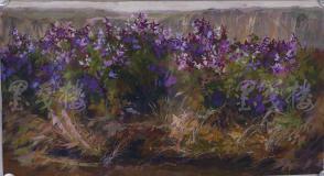 著名油画家、原湖北美术学院教授 崔哲民 1981年水粉画作品《有友性的豆》一幅  (钤印:崔哲民,尺寸:86*47cm) HXTX105347