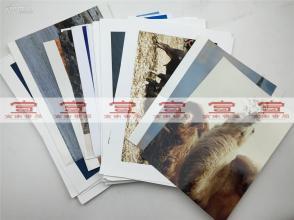 大众摄影参展照片:刘宏军等摄影照片《冬季草滩》等20张合拍(大尺幅 具体如图)【181224B 20】