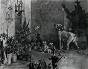 """1886年意大利艺术系列凹版蚀版画《被囚的三只狗》—意大利画家""""G.B.QUADRONE """"作品 42x29cm"""