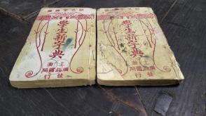 民国17年     上海广益书局印            新式绘图  陆保 睿  朱孝怡           《 学生新字典》       上下册一套 全    !