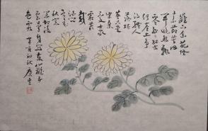 康生 花卉