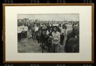1961年 西藏和平解放十周年慶祝活動現場照片一大張 附框(尺寸:36.5*58cm)HXTX119832