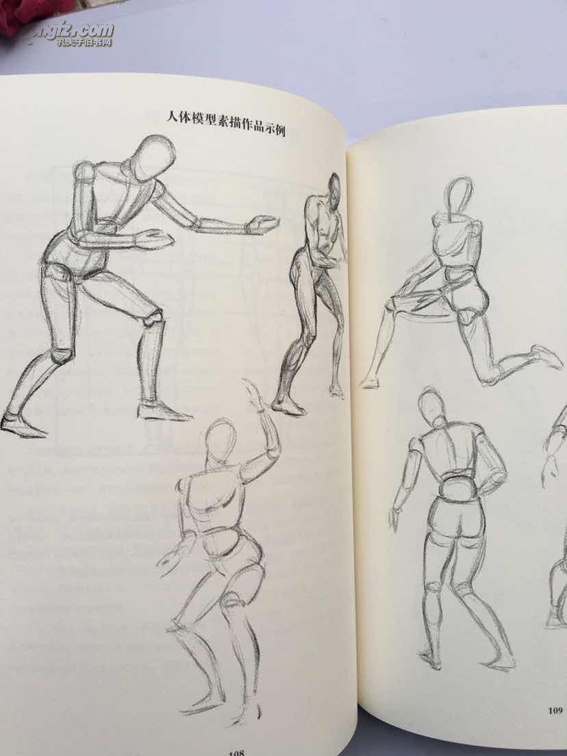 西方经典美术技法译丛图片