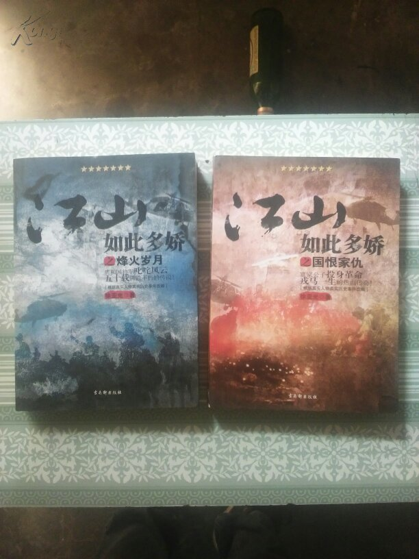 江山如此多娇之国恨家仇:烽火岁月【两本】