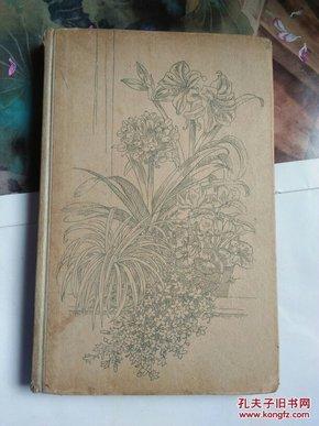 德文版: zimmerpflanzen richtic pflegen (室内植物的栽培),精装
