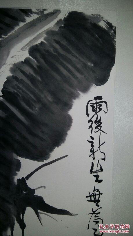 安徽著名老画家,合肥美协理事(张光多)四平尺……花鸟图片