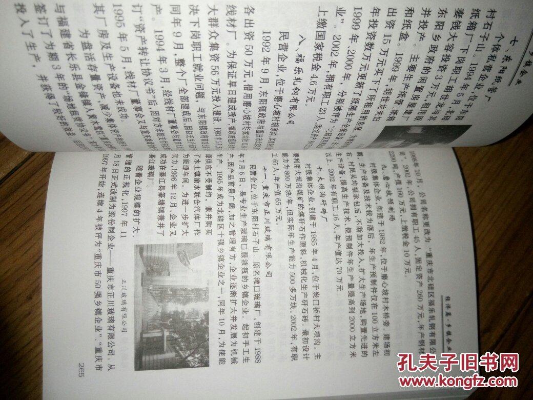 重庆市北碚区东阳镇志图片