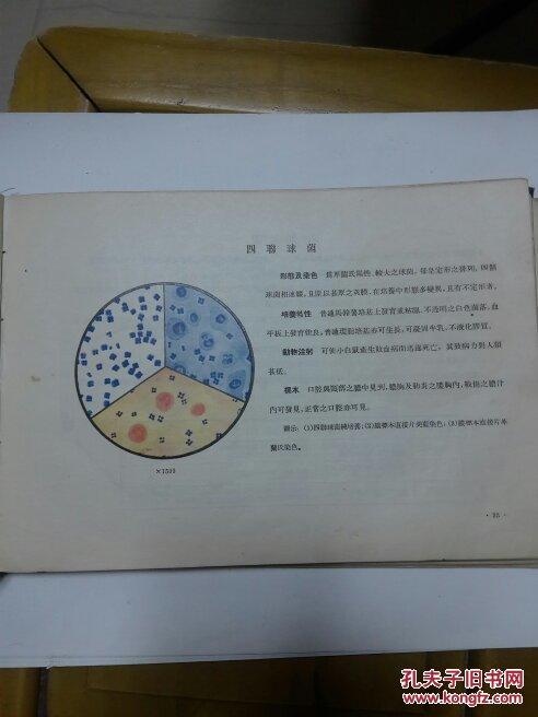 【图】医用笔画真菌学出版图解_细菌a医用检查袁隆平简人民步聚图片