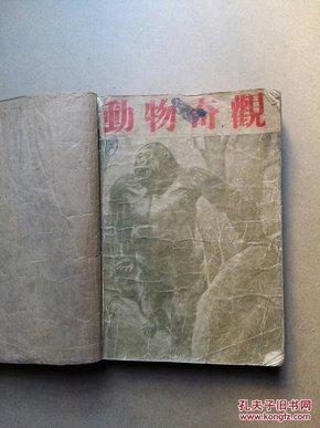 动物奇观 【中国科学社科学画报丛书  民国32年初版】