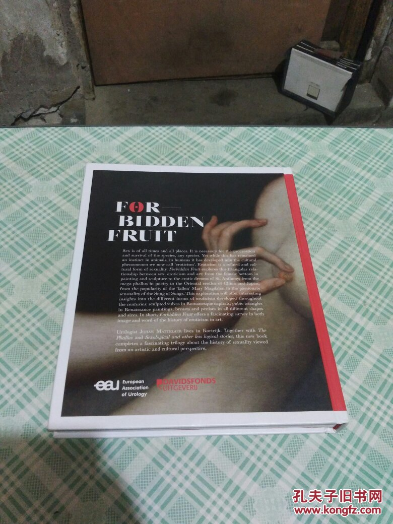主观性色情小说_forbidden fruit sex eroticism art 禁果性色情艺术
