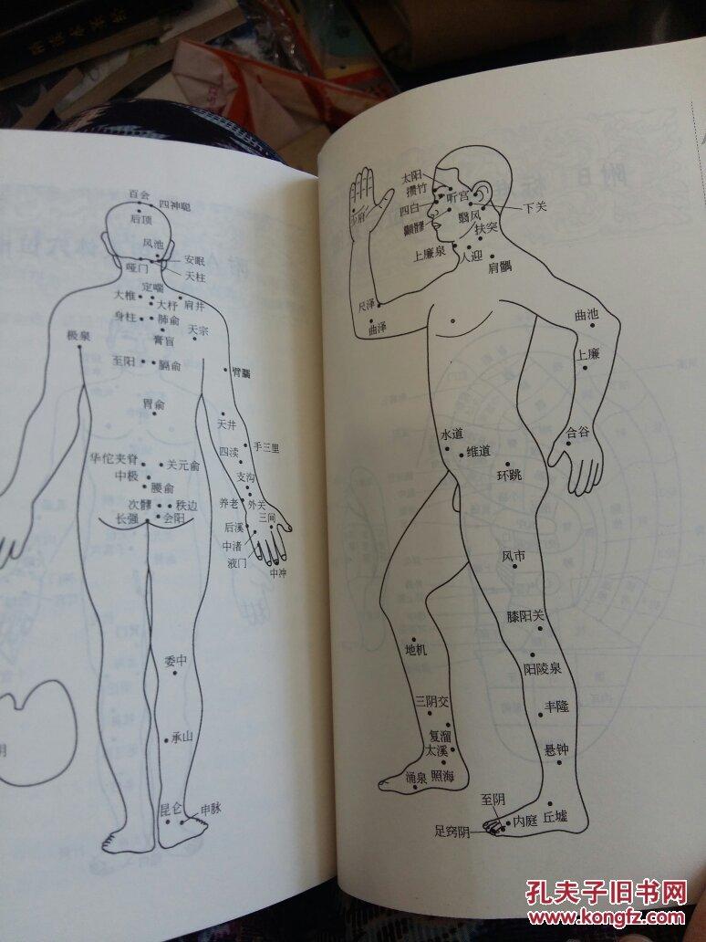 乱性生活囹�a_顽固性皮炎,湿疹,荨麻疹,带状疮疹,白癜风,脱发等/附a常用人体穴位图
