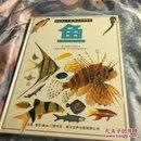 目击者丛书 自然博物馆《鱼》,书角磨损,内品佳
