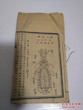 【害虫学】。