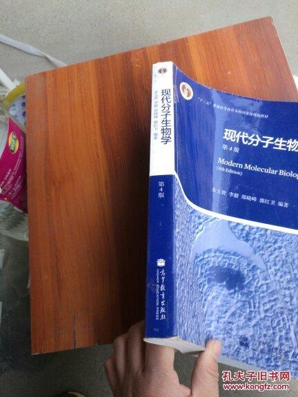 【图】现代分子生物学 第4版_高等教育出版社